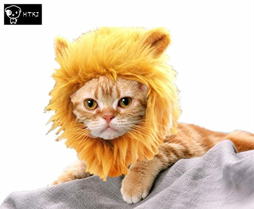 [HTKJ Lion Mane Dog Cat Costume Cute Pet Wig Hat for Cat or Small Dog Dress up Halloween Christmas] (Costumes For A Cat)