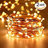 EShing 2-Pack 33ft 100 LED String Lights with Power Adapter, UL-Listed Copper Wire Warm White Waterproof Decorative Fairy Starry Lights for Wedding Party Bedroom Tapestry Garden Patio Gate Yard