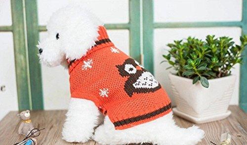 Amazon.de: kingken Cute Eule Owl Muster Puppy Rollkragen Pullover ...