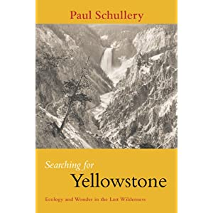 the Wonder Of Yellowstone