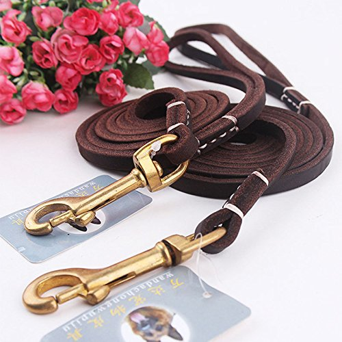 Hyalo(TM) Solid Color Pet Puppy Leash Cowhide Genuine Leather Dog Leash Lead Outdoor Walking Training Pet Collar Harness