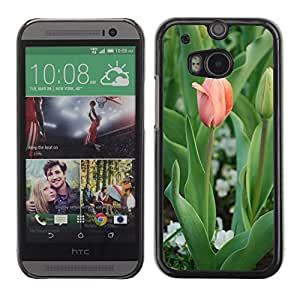 Hot Style Cell Phone PC Hard Case Cover // M00307387 Tulip Flowers Nature Plants Flower // HTC One M8