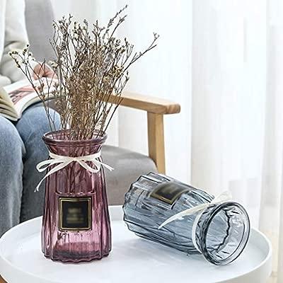 CBing-Indoor decorations Florero de Cristal Transparente, 4 ...