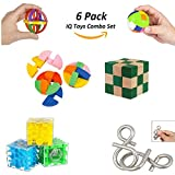 IQ Test Toy and Challenge and Highly Stimulating Brain Teasers - Challenging Mental Exercises for Sharp Young Minds -