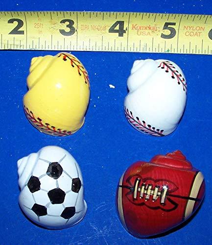 OutletBestSelling Polished Sea Shells \ Beach Shells 4 Hermit Crab Shells Painted Sports Balls Crafts Fish Tank Display Decor - Hermit Crab Shells Seashells