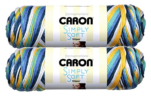 Caron Simply Soft Bulk Buy Stripes 100% Acrylic Yarn (2-Pack) ~ 5 oz. Skeins (Madison Avenue)