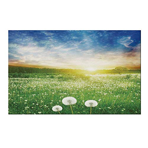 YOLIYANA Spring Durable Door Mat,Dandelion Flower Field Meadow Rural Grass Vivid Sunset Clouds Idyllic Image Decorative for Home Office,17.7