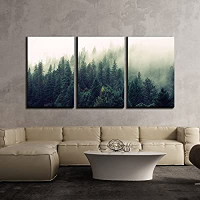 3 Piece Canvas Wall Art - Landscape with Trees in Mist - Modern Home Art Stretched and Framed Ready to Hang - 16