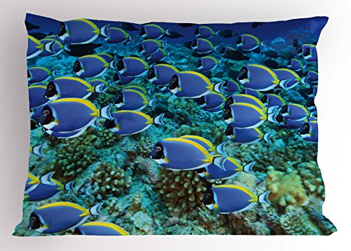 - Lunarable Ocean Pillow Sham, School of Powder Blue Tang Fishes in The Coral Reef Maldives Deep Seas, Decorative Standard Queen Size Printed Pillowcase, 30 X 20 Inches, Aqua Blue and Yellow