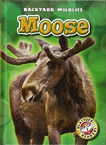 Moose (Blastoff Readers. Level 1) (Backyard Wildlife: Blastoff! Readers, Level (One Moose)