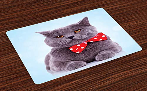 (Ambesonne Cat Place Mats Set of 4, Tuxedo Gray Scottish Fold Theme with Vermilion White Polka Dots Tie Bow Baby Blue Fun, Washable Fabric Placemats for Dining Room Kitchen Table Decoration, Multicolor)
