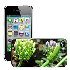 Hot Style Cell Phone PC Hard Case Cover // M00310450 Flower Plant Purple Purple Flower // Apple iPhone 4 4S 4G