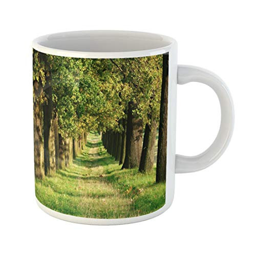Tarolo 11 Oz Mug Coffee Mug Ceramic Tea Cup Allee Avenue of Old Oak Trees By the Sun in Early Autumn Grassy Road Fall Footpath Large C-handle Family and Office Gift