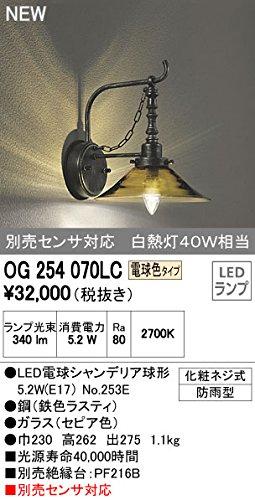 オーデリック エクステリアライト ポーチライト 【OG 254 070LC】OG254070LC B01AHQEC7S 15863