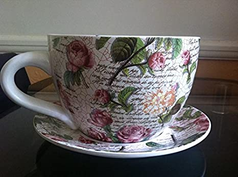 Giant Ceramic Tea Cup Planter Rose Ideal For Home And Office