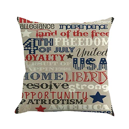 EINCcm Vintage American Flag Print Throw Pillow Covers, Square Retro Throw Pillow Cases Soft Classic Cushion Case Decorative Pillow Case for 4th July Home Decor(F, 18