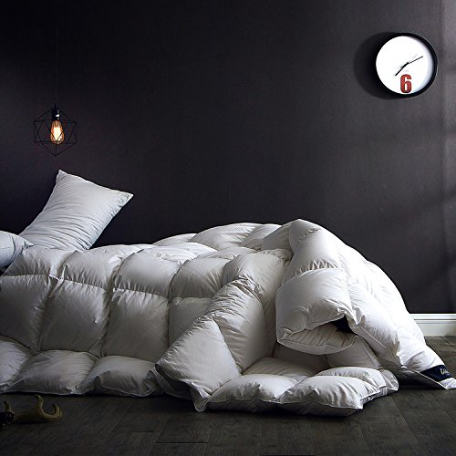 bedding size duvet home cotton king item thick textile queen set goose down luxury comforter warm quilt