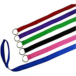 Downtown Pet Supply 6 Foot Slip Lead, Slip Leads, Kennel Leads with O Ring for Dog Pet Animal Control Grooming, Shelter, Rescues, Vet, Veterinarian, Doggy Daycare (6 Pack)