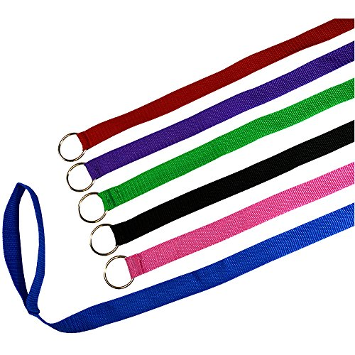 Downtown Pet Supply 6 Foot Slip Lead, Slip Leads, Kennel Leads with O Ring for Dog Pet Animal Control Grooming, Shelter, Rescues, Vet, Veterinarian, Doggy Daycare (24 Pack, Colors: Various) from Downtown Pet Supply