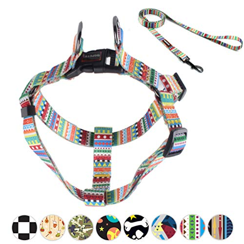"""QQPETS Cute No-Pull Dog Harness and Leash Set Heavy Duty Nylon Escape Proof Dog Harness for Small Puppies Breed Girl Boy Easy Walk Adjustable Chest:14-20"""" Rainbow Pattern"""