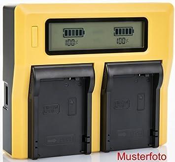 Bundlestar LCD Cargador doble de batería para Sony NP FV50 FV70 FV100 FH50 FH70 FH100
