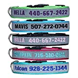 LovelyDog Embroidered Personalized Dog ID Collar, 4 Adjustable Sizes: Extra-Small, Small, Medium, Large with Dog Name Phone#, Reflective Pet Pink Dog Collars for Boy & Girl Dogs, X XS M L XL