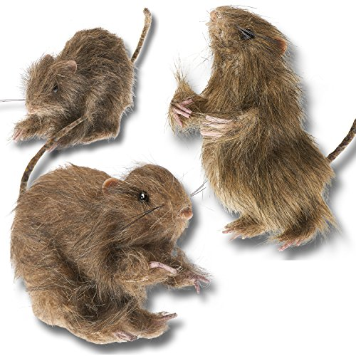 Prextex Realistic Mini Hairy Rats for Best Halloween (Halloween Prank)