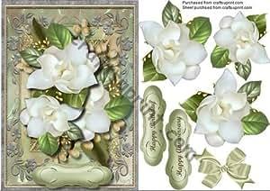 De blanco Magnolias de tiradores para en una Marco de by Ceredwyn Macrae