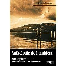 ANTHOLOGIE DE L'AMBIANT D'Éric Satie à Moby : nappes, aéroports et paysages sonores (French Edition)