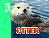 Otter (Wild World)