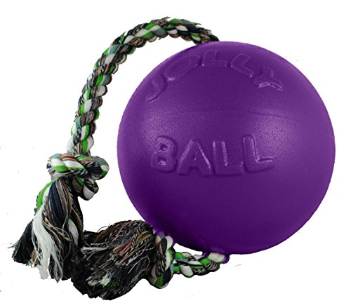 Jolly Pets 6-Inch Romp-n-Roll, Purple by Jolly Pets