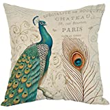 Moslion Peacock Pillow,Home Decor Throw Pillow Cover with Feather And Letter Cotton Linen Cushion for Couch/Sofa/Bedroom/Livingroom/Kitchen/Car 18 x 18 inch Square Pillow case
