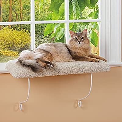 Kitty Shelf from J.H. Smith Company