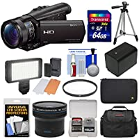 Sony Handycam HDR-CX900 Wi-Fi HD Video Camera Camcorder with Fisheye Lens + 64GB Card + Case + LED Light Set + Battery + Tripod + Filter Kit