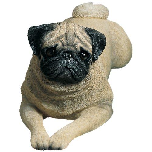 Sandicast Life Size Fawn Pug Sculpture, Lying