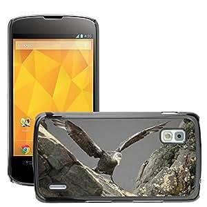 GoGoMobile Slim Protector Hard Shell Cover Case // M00123401 Albatross Baby Learning Nature Bird // LG Nexus 4 E960