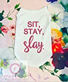 Sit Stay Slay Dog Shirt