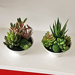 Zereff Ornamental vases Artificial Flowers Mini White Pots Simulation Plant Aloe Vera Immortal Finger Potted Plants - (Style: 2) 2