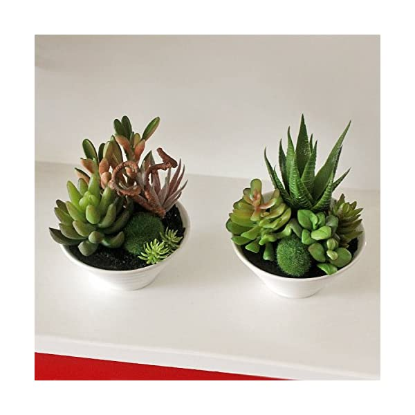 Zereff-Ornamental-vases-Artificial-Flowers-Mini-White-Pots-Simulation-Plant-Aloe-Vera-Immortal-Finger-Potted-Plants-Style-2
