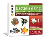 Hydor Prodibio Cure Aquarium Medication Bacteria and Fungi for Freshwater 6 vial Hydor Usa
