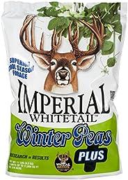 WINA WP11 Winter Peas Plus