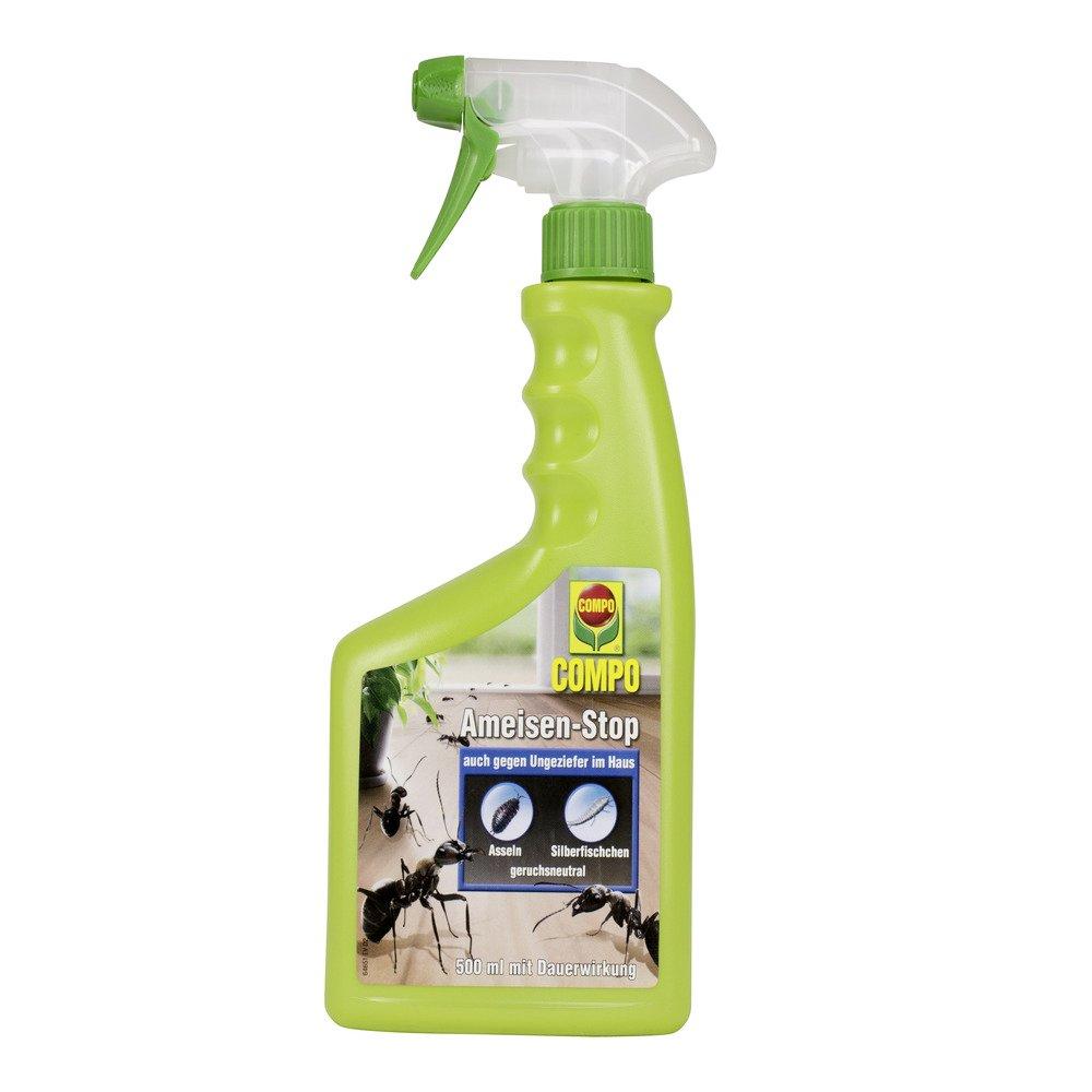 COMPO Ameisen-Stop, Insektenspray mit Langzeitwirkung, 500 ml 16465 B0012ILTMM