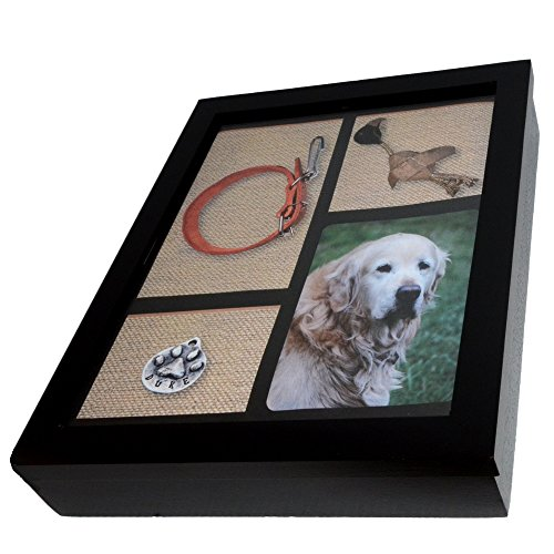 Imagine This Pet Urn Shadow Box, 9-1/2 by 12-1/2 by 2-1/4-Inch (Shadow Box Safe)