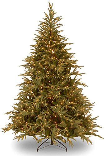 9' Pre-Lit Frasier Grande Artificial Christmas Tree - Dual Color LED Lights (Christmas Tree With Dual Lights White And Multicolored)