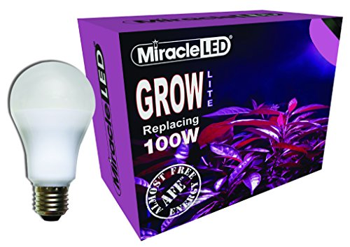 Miracle LED Almost Free Energy 100W Red & Blue LED Grow Lite - Combines Red & Blue Light for Healthy Indoor Plant Growth and Photosynthesis in DIY Horticulture & Hydroponic Gardens (604292)Single Pack (Led Bulbs Miracle Grow)