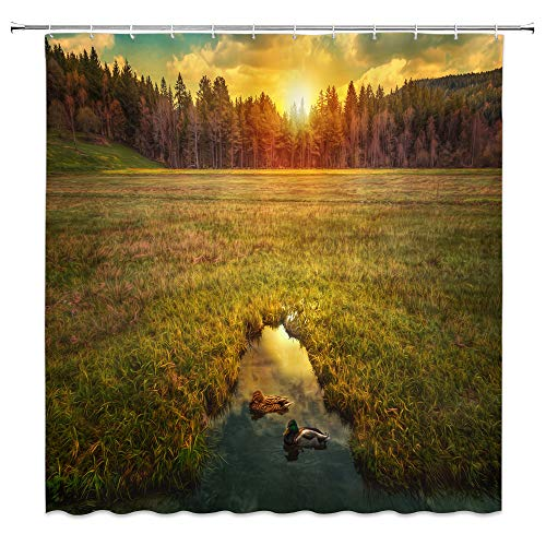 dachengxing Rural Shower Curtain Rustic Scenery Decor Wetland Meadow Creek with Duck Swimming Dense Forest Waiting for Sunrsie Waterproof Green Brown Fabric Bathroom Hooks Included 70x70 - Advantage Fabric Wetlands