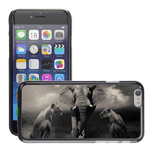 "Just Phone Cases Hard plastica indietro Case Custodie Cover pelle protettiva Per // M00128142 Lionnes Lion Elephant Big Cats // Apple iPhone 6 PLUS 5.5"""