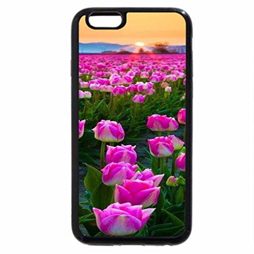 iPhone 6S / iPhone 6 Case (Black) Tulip sunset