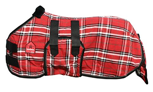(Kensington Mini Plaid Poly Cotton Stable Sheet, Deluxe Red Plaid, 34-38-Inch)