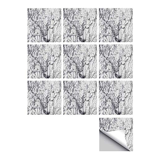 (C COABALLA Apartment Decor Stylish Ceramic Tile Stickers 10 Pieces,Murky Marble Rock Motifs with Dynamic Fractal Figures Abstract Artsy Print for Kitchen Living Room,5